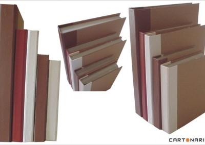Livros falsos para decoração de loja de móveis [OT023]