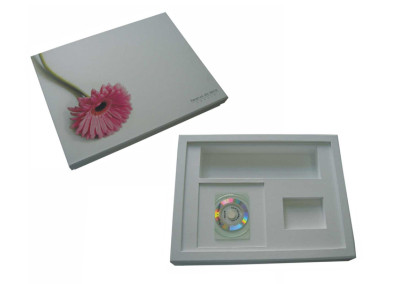 Reserva da Serra (caixa para entrega de chaves de imóvel) [PT063]