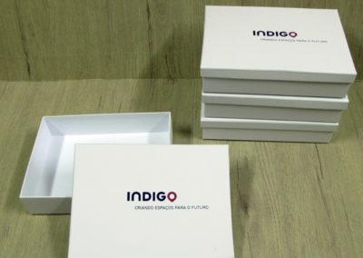 Indigo – Aministradora geral de estacionamento S. A. [CA305]