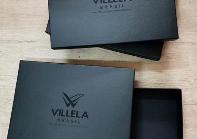 Villela Brasil Consultoria em Gestão [CA344]