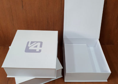 V4 Company ltda [PA544]